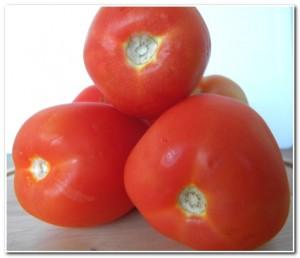Molho de Tomates Especial