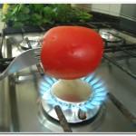 tomate (5)