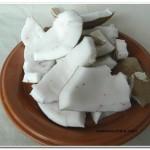 leite de coco (4)