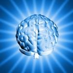 Alimentação e a Saúde do Cérebro